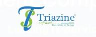 Top 10 Web Development Companies 2021   Triazine Software